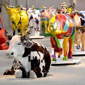 История парада коров