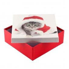 Коробка подарочная ООТВ Santa Cat 22 х 22 х 8 см