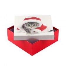 Коробка подарочная ООТВ Santa Cat 18 х 18 х 8 см