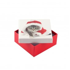 Коробка подарочная ООТВ Santa Cat 10 х 10 х 8 см
