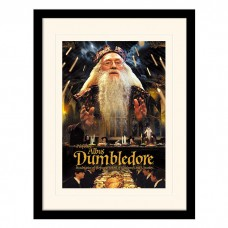 "Постер в раме ""Harry Potter (Dumbledore)"" 30 x 40 см"
