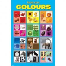 """Постер """"Know Your Colours""""  61 x 91,5 cм"""