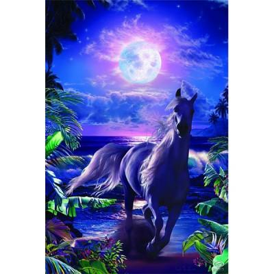 "Постер ""Lassen-A Midnight Stroll"" 61 x 91,5 см"