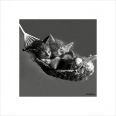 Постер в раме Keith Kimberlin (Kittens in a Hammock)