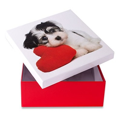 Коробка подарочная ООТВ Собака с сердцем 18 х 18 см