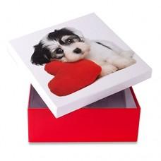 Коробка подарочная ООТВ Собака с сердцем 22 х 22 см