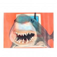 "Открытка 3D ""Акула"""