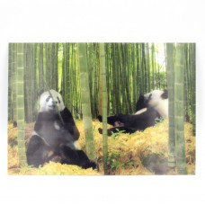 """Открытка 3D """"Панда"""""""
