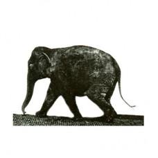 """3D открытка """"Слон Мейбриджа"""""""